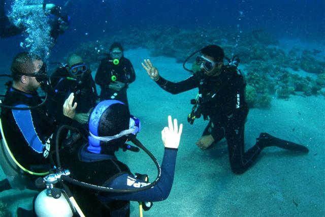 Diving Jobs