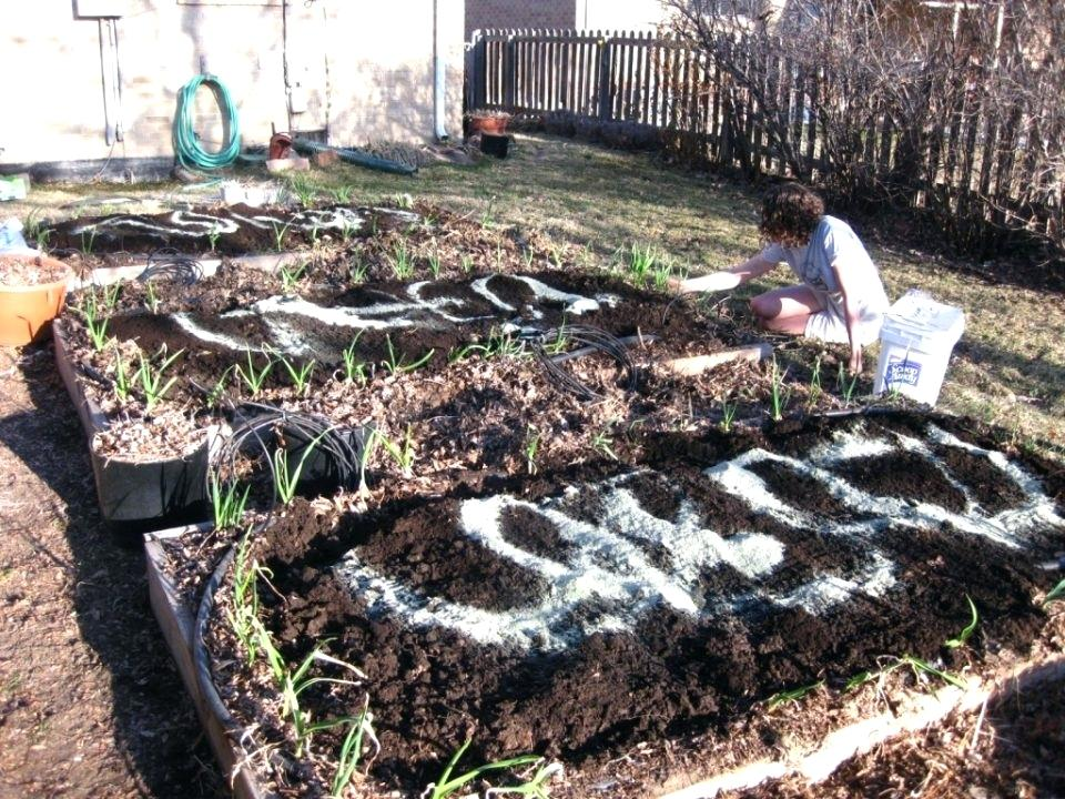 buy garden soil