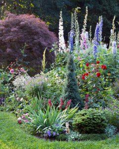 gardening app