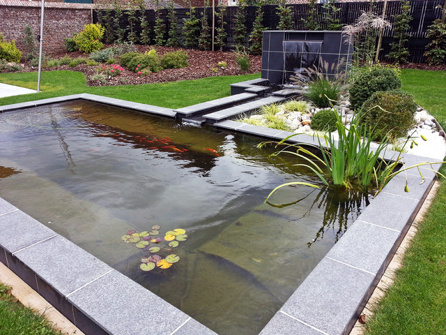 Clear Water In Garden Ponds - Maintaining Sparkling Water In Your Pond